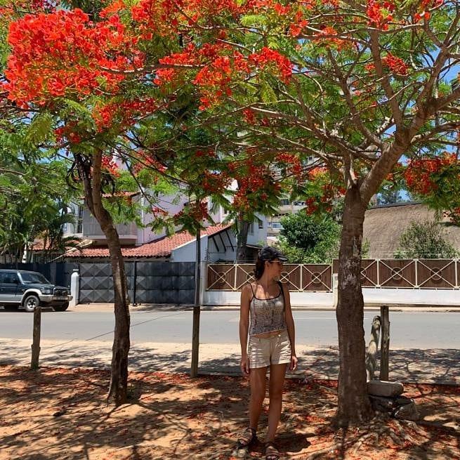 01 em Maputo.jpg
