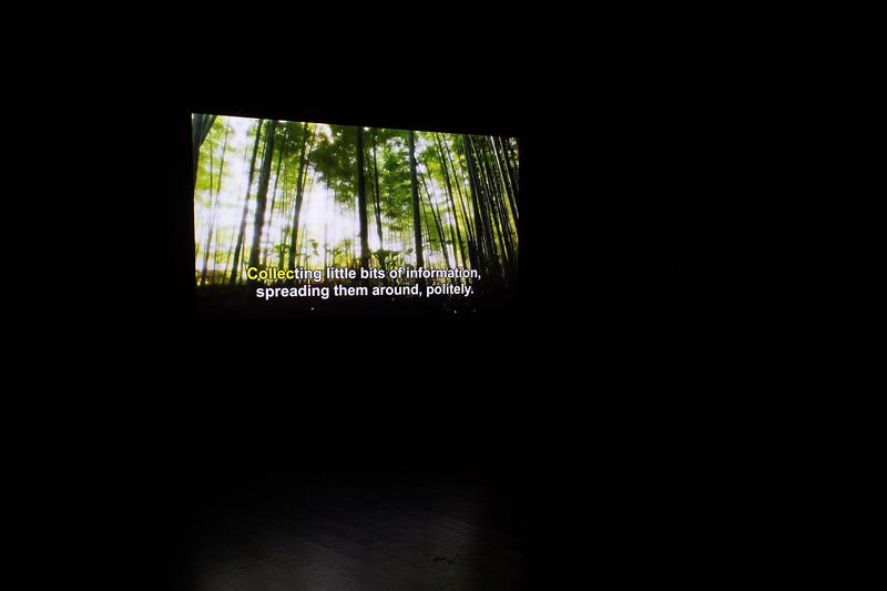Ikebana (at Letter Landscapes)_Imagem reduzida.jpg